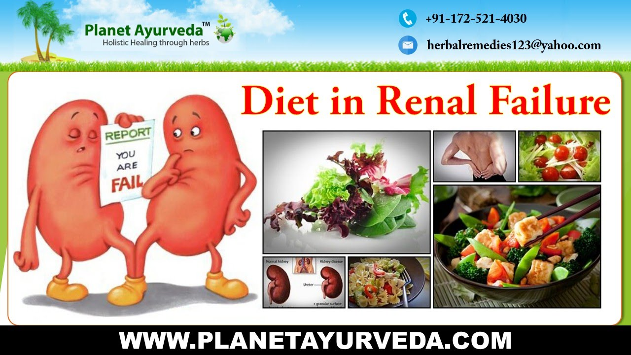 Renal diet: Foods to eat and avoid for kidney failure