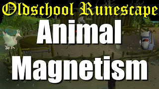 OSRS Animal Magnetism Full Quest Guide