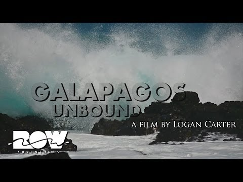 Galapagos Unbound: An Island Adventure Tour