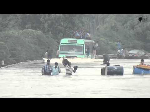 superb bus driver @chennai floods