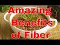 Amazing fiber benefits for health
