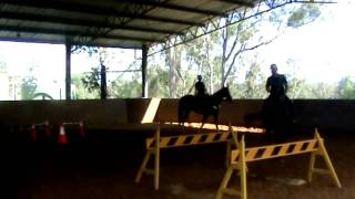 Queensland Police Mounted Unit Training