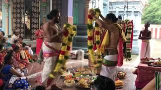 Malai MatrinalKothai Mala Satrinal | Nagaswaram Desur Brothers S.Shanmugasundaram & S.Sethuraman