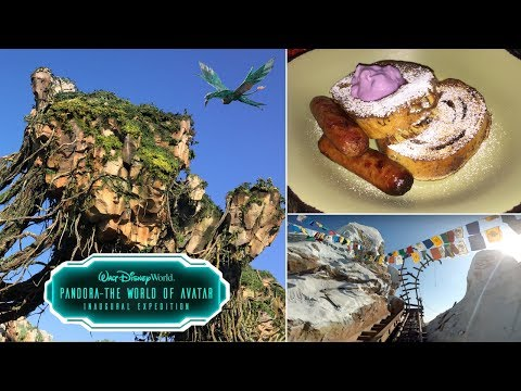 NEW Pandora The World Of Avatar Breakfast Review, Flight of Passage & Expedition Everest!