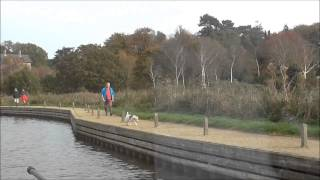 Norfolk Broads 31st October 2014
