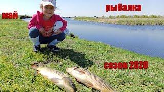 Рыбалка на сазана в мае отдых сезон жидкой воды открыл озеро Сартлан красный яр