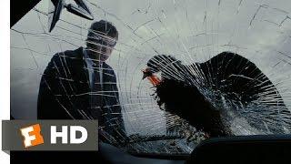 Boogeyman (3/8) Movie CLIP - Bird in the Windshield (2005) HD