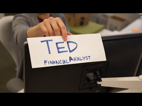 TED: FINANCIAL ANALYST