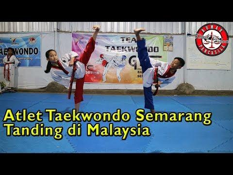 Yosep Parera Lepas 11 Atlet Taekwondo Tanding Di Malaysia