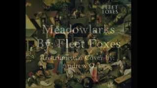 Meadowlarks - Fleet Foxes (Acoustic Instrumental Cover)
