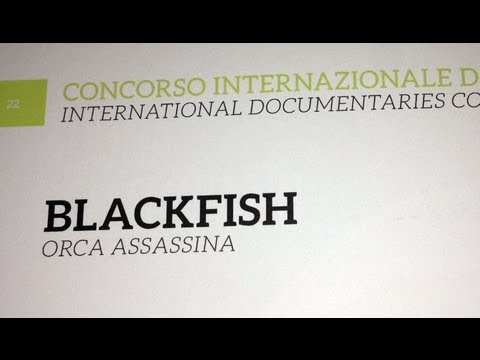 Blackfish Q&A from Torino, Italy with Focus on the Non-Human Rights Project