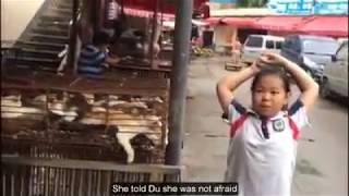 Yulin Dog Meat Festival 2017