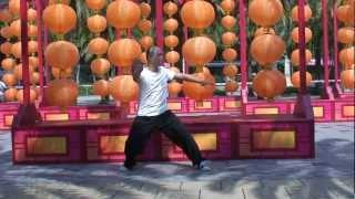 吳家鄭式太極拳圓拳第一段 (Wu Style) Ng's Cheng style Tai Chi circle Form the first parts