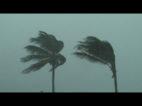 what-should-i-do-before-a-hurricane?-and-after?