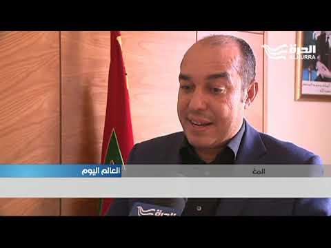 ترحيب شعبي وعدم حماس حكومي لتقديم ملف مشترك لاستضافة كأس العالم مع الجزائر وتونس  - نشر قبل 5 ساعة