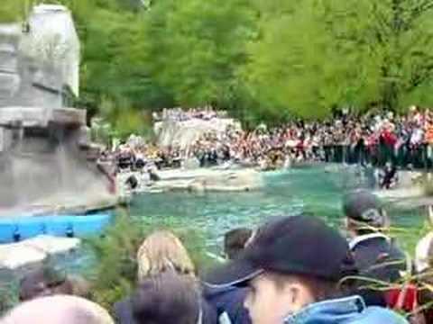 Tiergarten Schönbrunn - Vienna Zoo