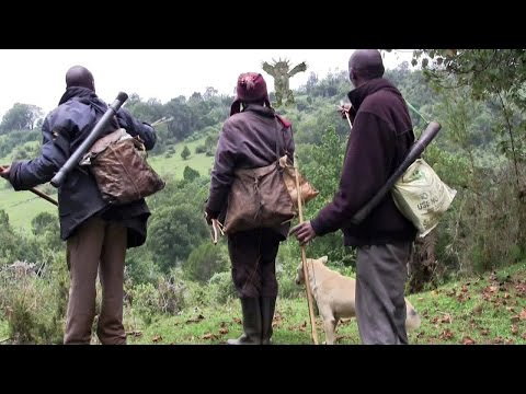 Ogiek film: Giant of the Mau Forest
