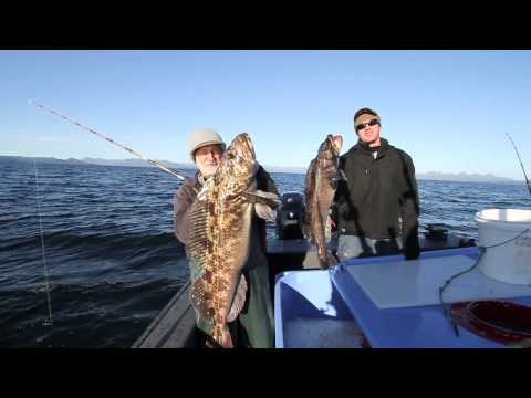 Kodiak Island Charter fishing  with Rooster Charters