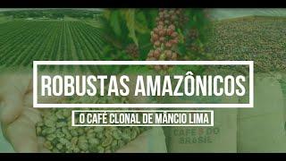 DOCUMENTÁRIO CAFÉ - PARTE 2