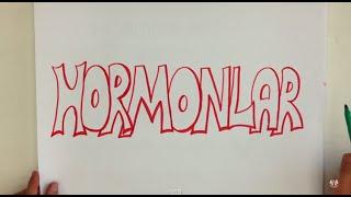 4dk'da HORMONLAR