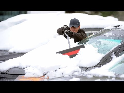 Spring snowstorm piles high and breaks trees in Fort Collins