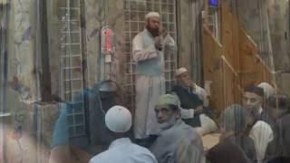 Why Islam    Interview & Shahada    Nick Purrer