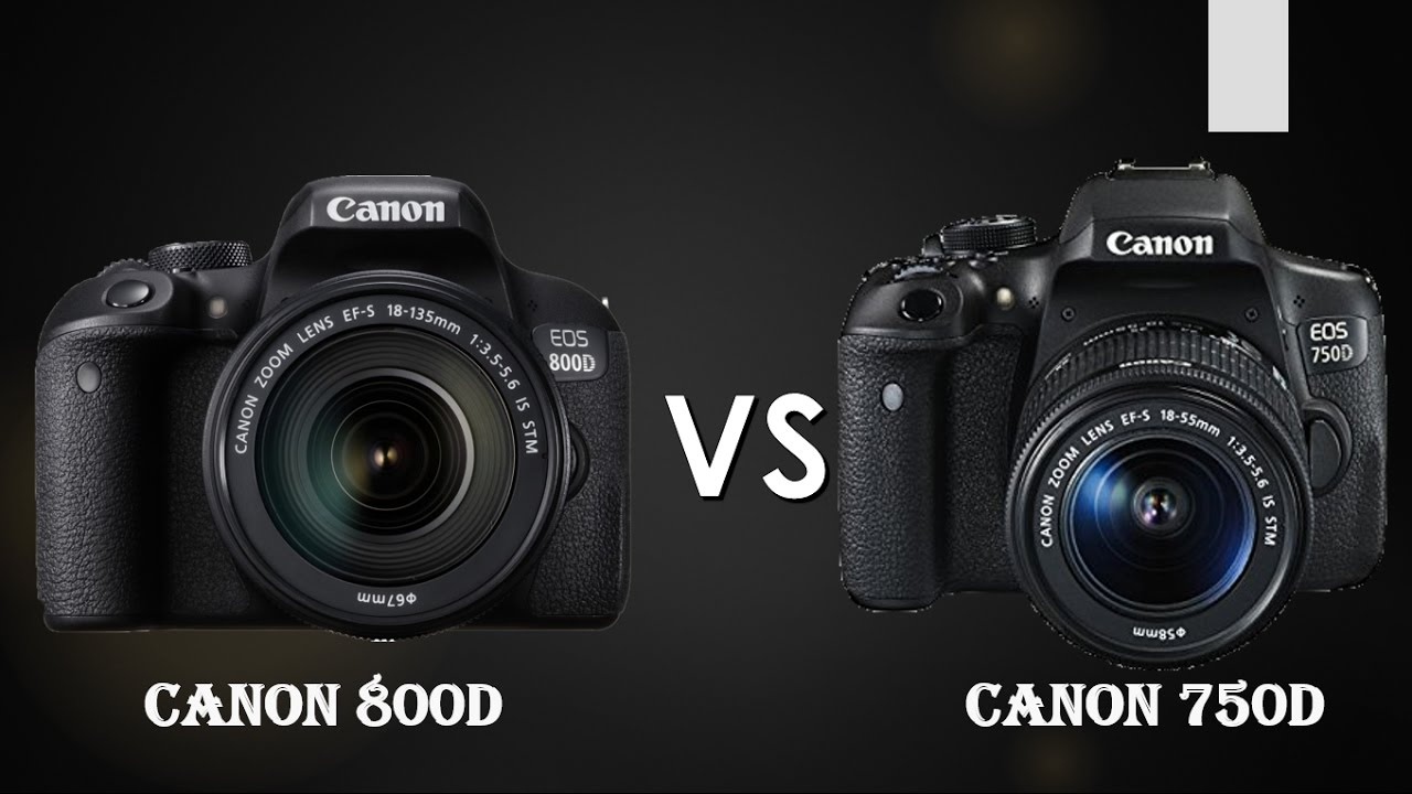 Canon 800D(Rebel T7i) vs Canon 750D(Rebel T6i) (Straight to the point)