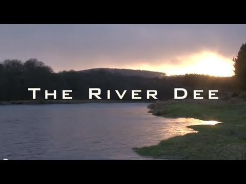 River Dee Springers with Andy Richardson