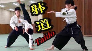 思わず躰道をやってみたくなる映像【4】 Try! Taido!