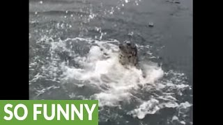 drowning-seal-is-an-unbelievable-actor