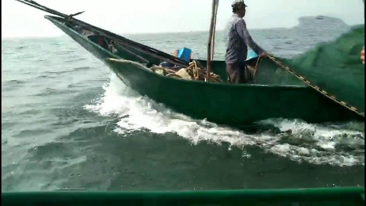 老二趕海。為了抓大貨。早上五點就去東海撒大網。果真有大貨【老二趕海】 - YouTube
