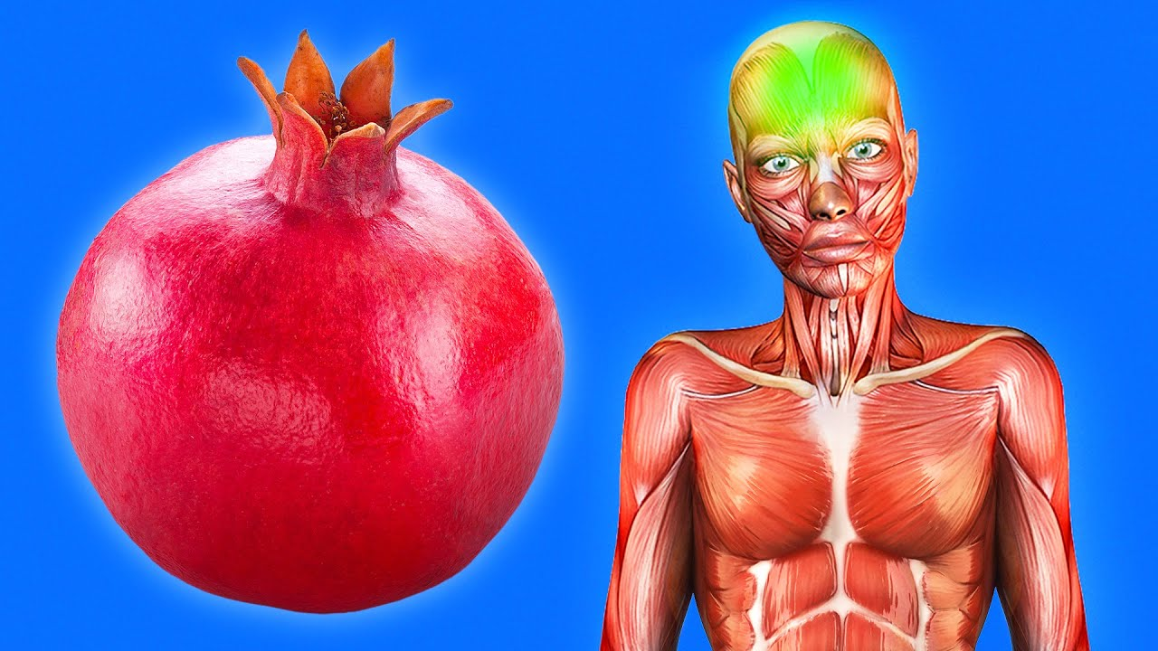Download Start Eating 1 Pomegranate Every Day, See What Happens to Your Body