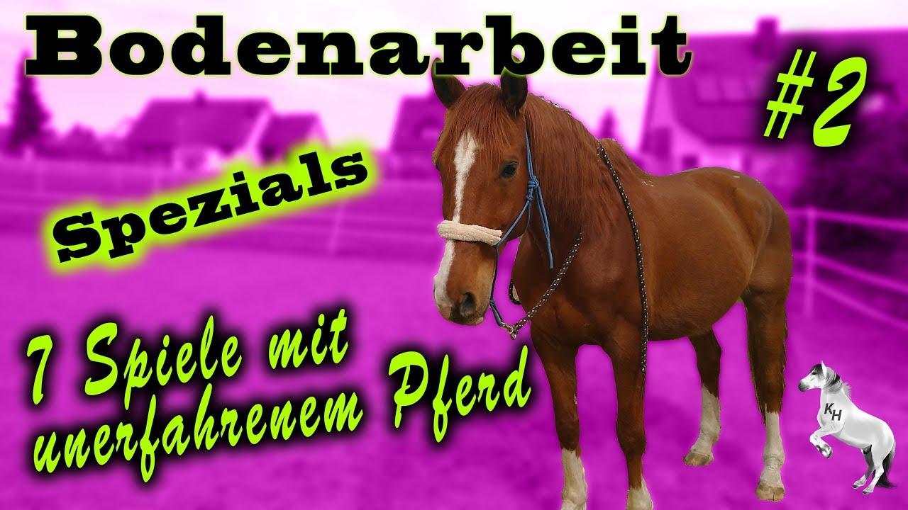 Spiele Pferd