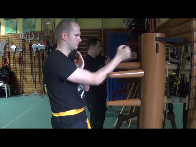 Traditionel Wing Chun GM Walter Toch