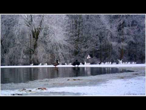 Tori Amos - Winter (Happy Hardcore Remix)