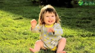 видео Укладка рулонного газона: цена вопроса