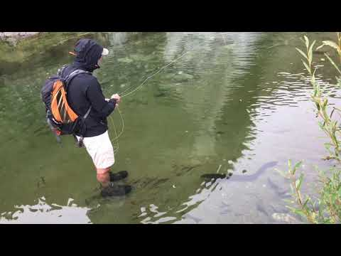 Fly Fishing In Canterbury New Zealand, April 2019 ( Part 1)