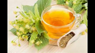 Монастырский чай от диабета отзывы