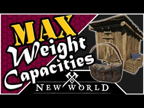 New World - Maximum Storage Space & Carry Capacity