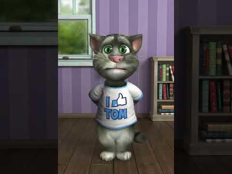 Tu Tu Tu Tu Tu Tara Fat Gya Katcha Bechara By Our Beloved Tom Cat