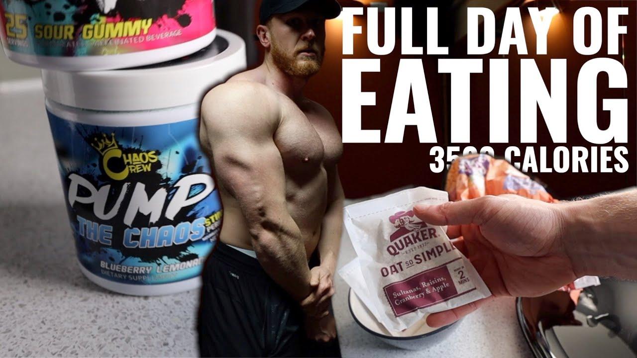 Download Full Day of Eating, Offseason Bulk, 3500 calories