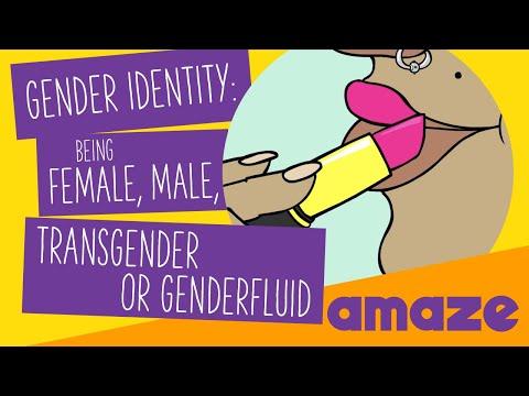 Gender Identity: Being Female, Male, Transgender Or Genderfluid