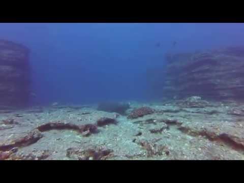 Scuba Diving Niihau with Fathom Five Divers July 2015