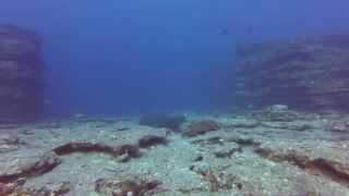 Scuba Diving Niihau with Fathom Five Divers July 2015
