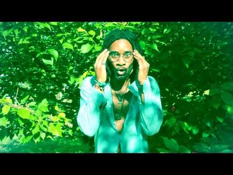 The Joshua Hill Experience  The Greene Garden  Music Video