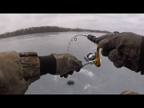"Ice Fishing For Walleye & Perch ""Chasing Flags"""