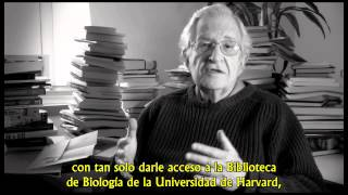 Noam Chomsky - El objetivo de la educación - Subtitulado
