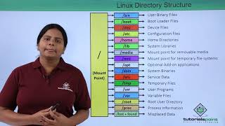 [11.10 MB] Linux Directory Structure