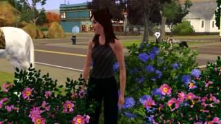 Sims3/НОВСТИ Люди Против Собак