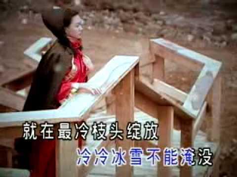 Zhuo Timi 卓依婷  Yi Jian Mei 一翦梅 One Plum Blossom